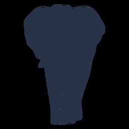 Vista frontal do elefante