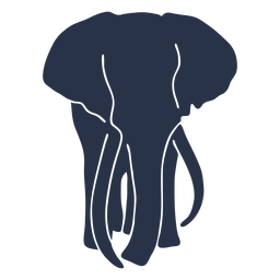 Elefant volles Gesicht