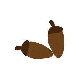 Acorn textured illustration