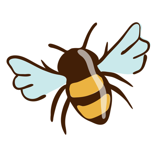 Bee highlights hand drawn Transparent PNG