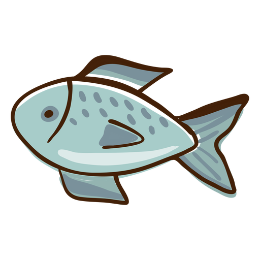 Fish highlights hand drawn