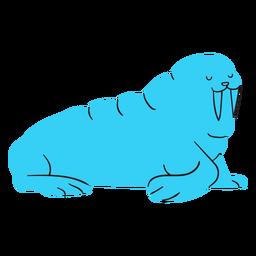 Morsa plana azul descansando