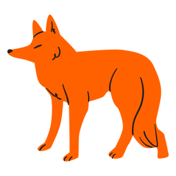 Raposa laranja plana