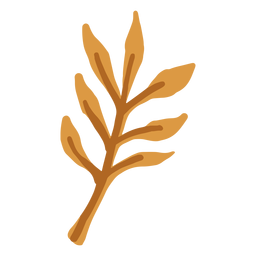 Hand drawn doole brown branch leaves