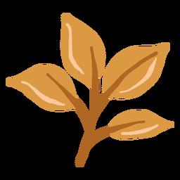Rama de hojas marrones brillantes dibujadas a mano