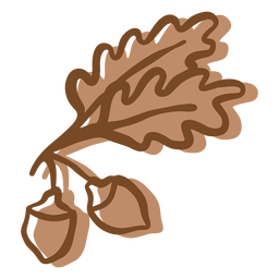 Hand drawn stroke oak leaves acorn