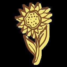 Hand drawn stroke sunflower