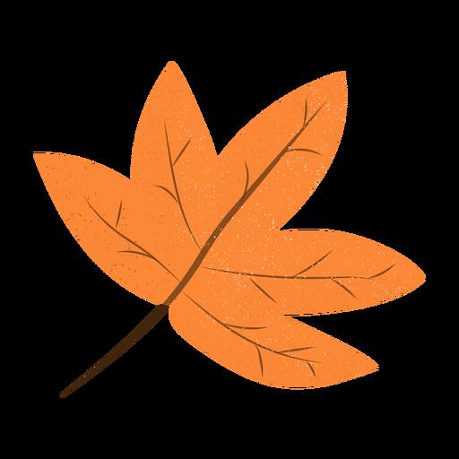 Maple leaf textured illustration Transparent PNG