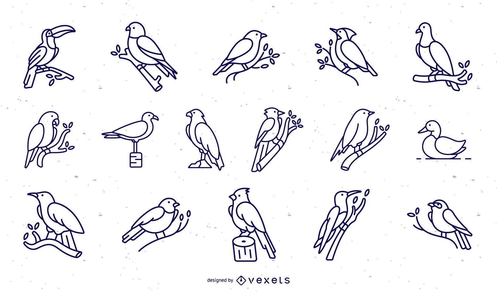 Birds stroke collection