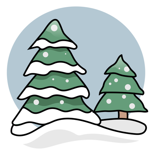 Abeto nieve plana
