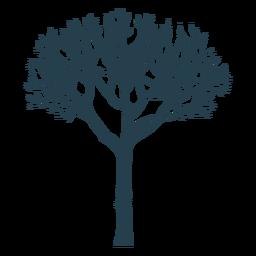 Tree branch trunk silhouette