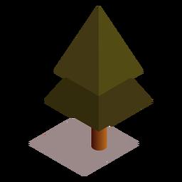 Baum isometrisch