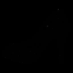 Curso de sapatos de quinceanera floral