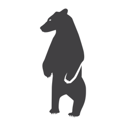 Bear standing silhouette bear