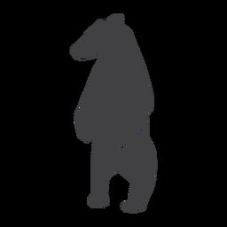 Urso em pé silhueta urso