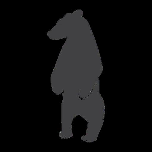 Bear standing silhouette bear Transparent PNG