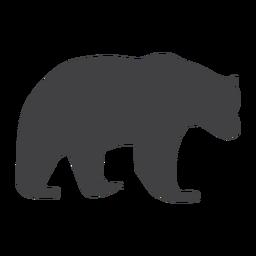 Urso urso silhueta caminhando