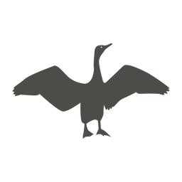 Cormorant flapping wings silhouette