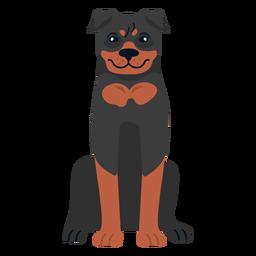 Rottweiler cachorro sentado
