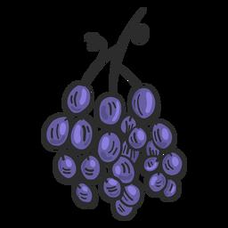 Dibujado a mano uva española