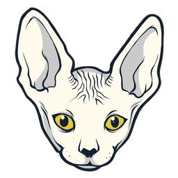 Sphynx cat head hand drawn