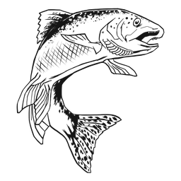 Mão de peixe truta desenhada