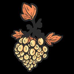 Dibujado a mano uvas blancas