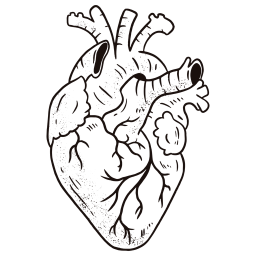 Awesome anatomical heart Transparent PNG