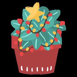 Cactus natal incrível