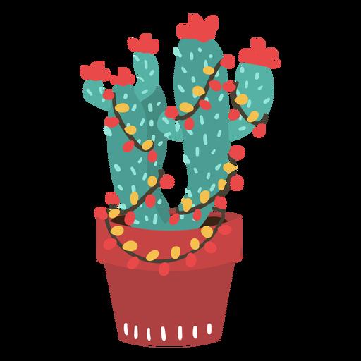 Cactus luces de navidad