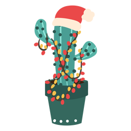 Cactus with santa hat