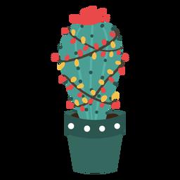 Cactus de Navidad lindo