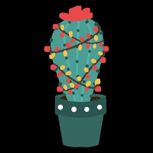Cactus de Navidad lindo Transparent PNG