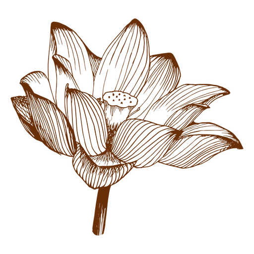 Flora flor simple