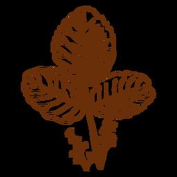 Flora studiert Pflanze