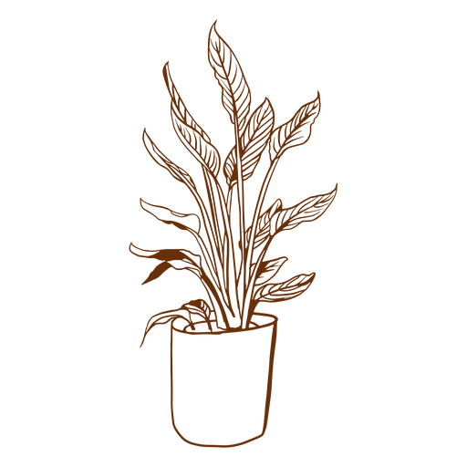 Simple plant pot Transparent PNG