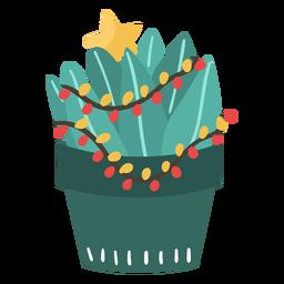 Pequeño cactus de navidad
