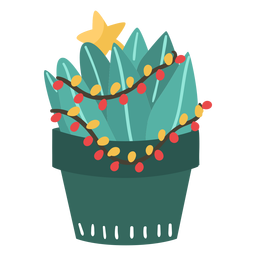 Pequeño cactus navideño