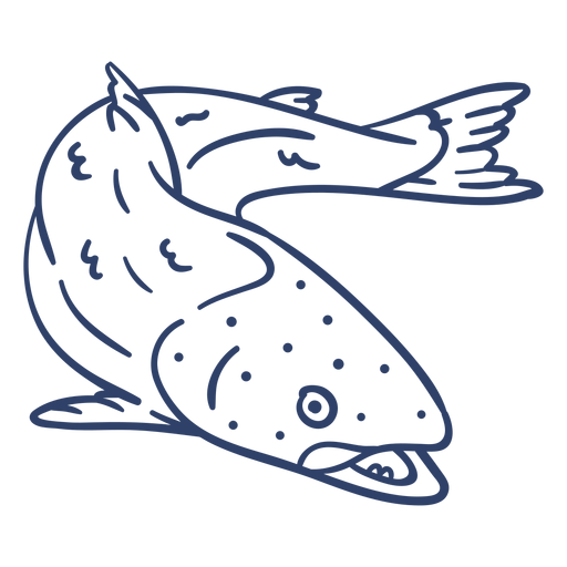 Arctic fish stroke Transparent PNG