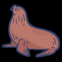 Arctic seal illustration