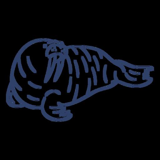 Golpe de morsa ártica