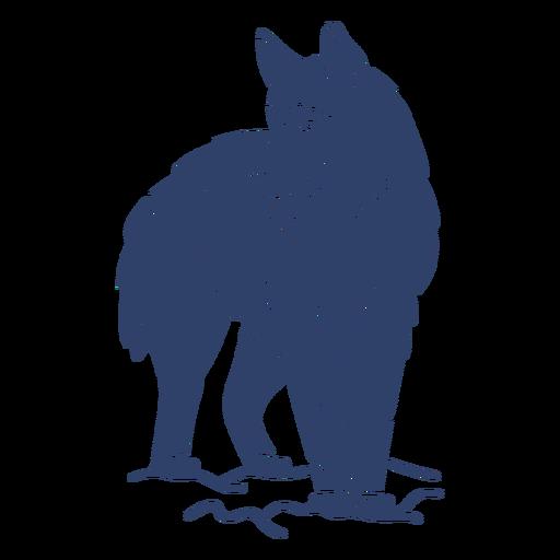 Arctic wolf blue