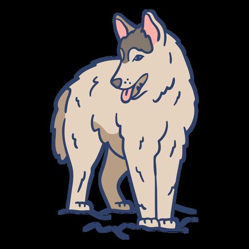 Ilustración de lobo ártico