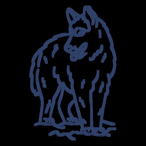 Golpe de lobo ártico