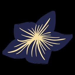 Blue hawaiian flower
