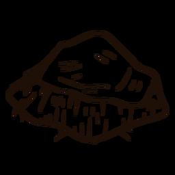 Dibujado a mano en rodajas de coco
