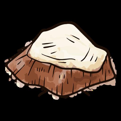 Coconut sliced watercolor