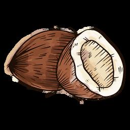 Acuarela de coco