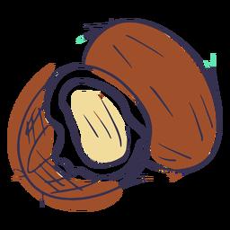 Coconuts doodle
