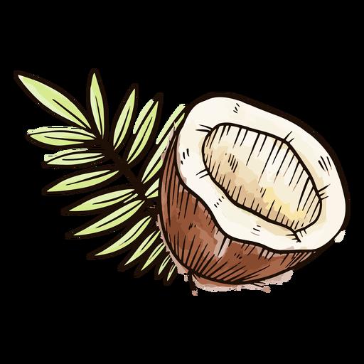 Cortar acuarela de coco